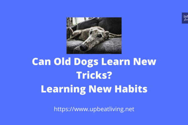 Can Old Dogs Learn New Tricks? Learning New Habits