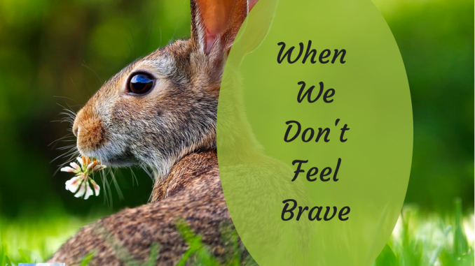 When We Don't Feel Brave