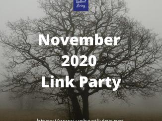 November 2020 Link Party