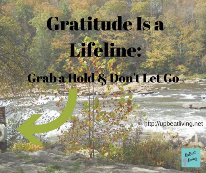 Gratitude is a Lifeline